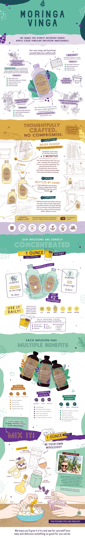 Moringa Vinga Infographic